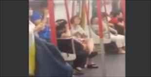 【キチガイ】携帯のバッテリーが無くなり電車内で泣き叫ぶ女