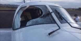 【動画】小型機にハゲタカが激突してパイロットが負傷