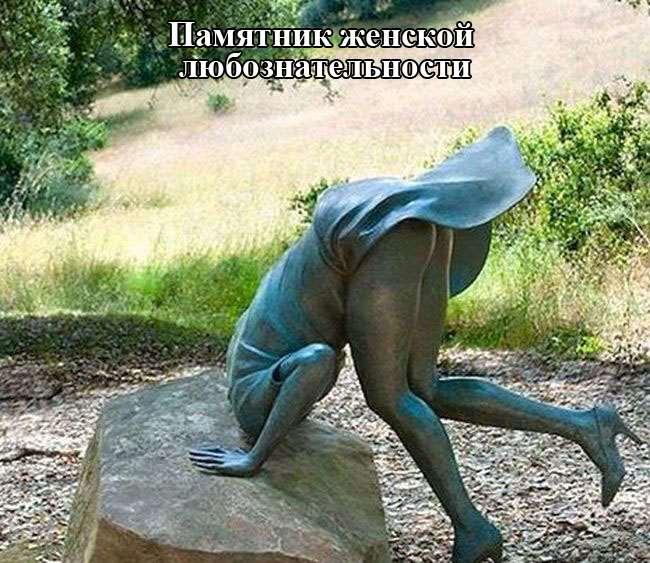 1438633477_podborka_29