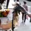 猛スピードの車に跳ねられた男性が通行人の女性に激突する瞬間
