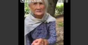 【衝撃動画】木登りを子供の様にいとも簡単にしてしまう97歳のおばあちゃんw