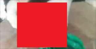 【閲覧注意】中国で緑色のビニール袋の中から発見されたもの。子供の切断された…