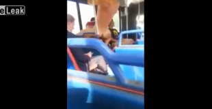 【エロ注意】公共バスの中でこんなに堂々とセックスするカップル初めてみたwwwww