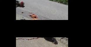【閲覧注意】交通事故でカップルがグチャグチャになってただの肉の塊になってる映像…