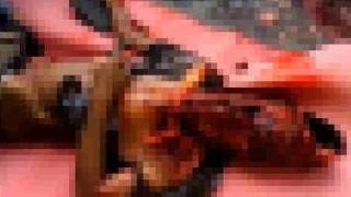 【閲覧注意】トラックに轢かれて頭が破裂して死亡した男性の遺体を回収する際に撮影された動画…。