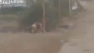 【動画】爆破装置の解除に失敗し爆発…。