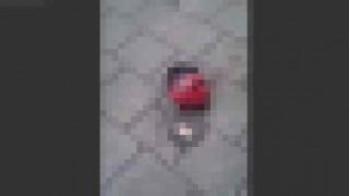 【閲覧注意】ギャングに斬首された刑事の頭部がバーの前に置かれてる…。