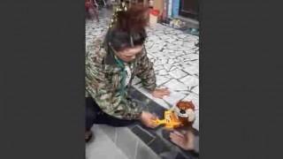 【動画】パニック系のおもちゃでリアクション芸人もびっくりの驚きを見せるおばちゃんwww
