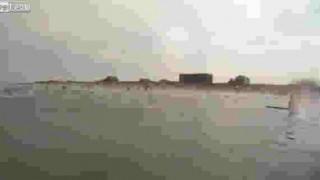 【衝撃動画】おびただしい数の魚が高速で飛び跳ねてくる!!!