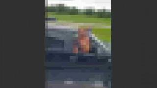 【エロ注意】隣を走行するドライバーに全裸でオナニーを見せてくれるブロンド美女wwwww