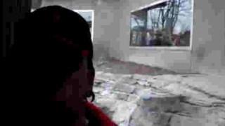 【動画】動物園でゴリラをバックに動画撮影してたら…。