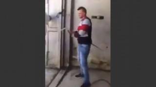 【動画】ただただ、ロバを高圧洗浄機で洗う男性。