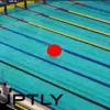 【衝撃動画】ロシアで開催された水泳大会にとんでもないヤツが乱入してきたwww