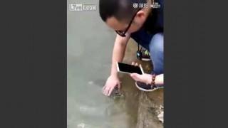 【衝撃動画】異常に人懐っこい魚が中国で撮影されるwwwww