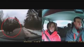 車に乗っていたカップルはなぜ死亡したのか ⇒ ドラレコ映像に、巨大な生物が…