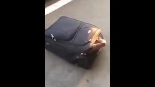 【衝撃動画】バッグに隠れて不法入国するヤツwwwww