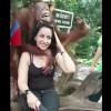 【エロ注意】どうしても観光客女性のおっぱい鷲掴みで揉みたいオラウータンwww