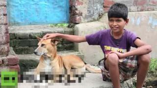 【衝撃動画】4歳から野良犬のおっぱいを飲んで育った男の子が乳首に吸い付くときの動画w