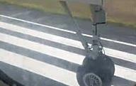 滑走路に紛れ込んだ鹿と着陸してきた飛行機が衝突するとこうなる(((゚Д゚)))