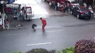 【動画】凶暴なピットブル、街中で20名の人に襲い掛かった結果…。