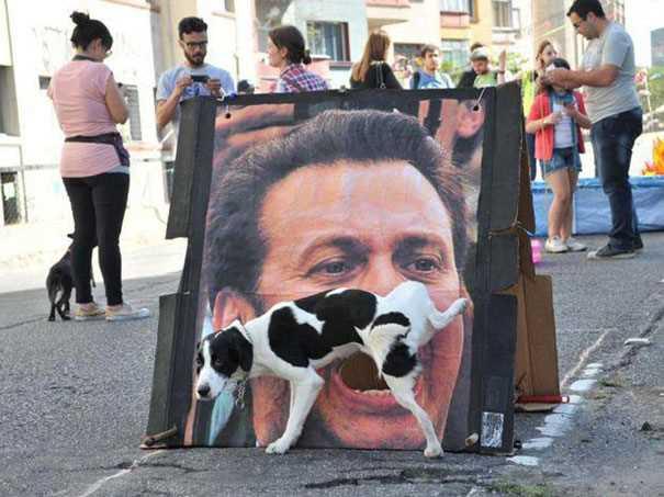 男性の画面写真に犬が小便してる画像