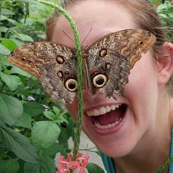 蛾が顔にとまってる女性