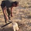 【衝撃】農作物を収穫するかのようにIED(即席爆発装置)を掘り起こす兵士。