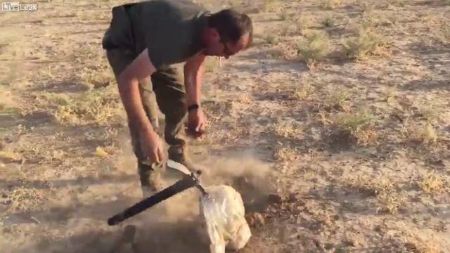 農作物を収穫するかのようにIED(即席爆発装置)を掘り起こす兵士